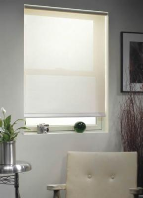 Roller Shades In Boston Roller Shade Roman Shades Bamboo Shades Window Shades Lynn Marblehead